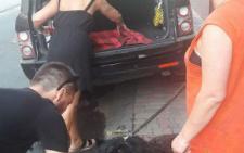 У Чернівцях рятували собаку, яка впала посеред тротуару через тепловий удар