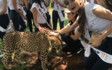 Чернівецька модель побувала на сафарі та погладила гепарда (фото)