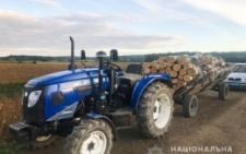 На Буковині поліція виявила крадіжку деревини