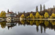 У Чернівцях один з найбільших парків отримав нового керівника