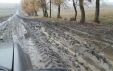 Дорога на Кельменеччині перетворилася на суцільне болото (відео)